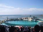 ocean_expo_park04.jpg